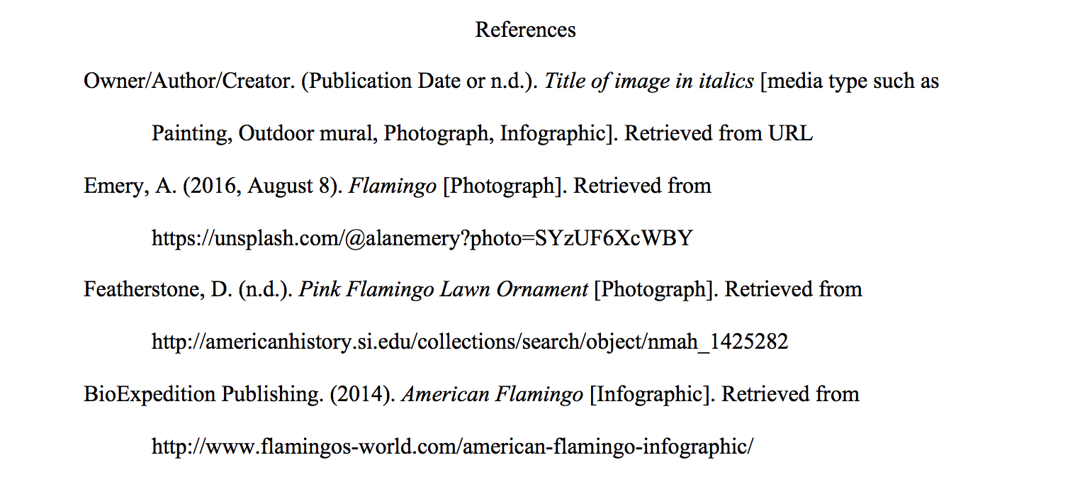 APA : Image Basic Website Image APA: Citing Electronic Images