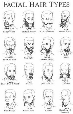 The Beardo Guide to Beard Styles and Beard Types | Beardilizer