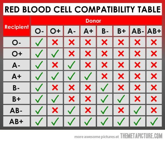Blood Types & Groups Chart | A, B, AB & O | Red Cross Blood Services