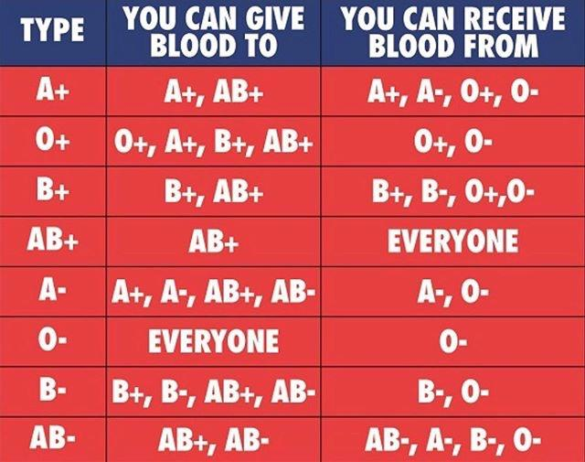 Blood Types : coolguides