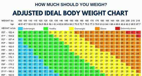 weight body chart Incep.imagine ex.co