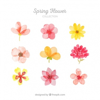 Flower Vectors, Photos and PSD files | Free Download
