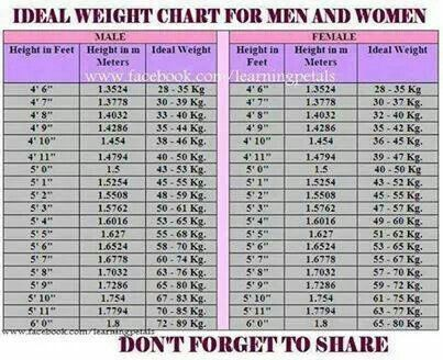 proper weight chart Roho.4senses.co