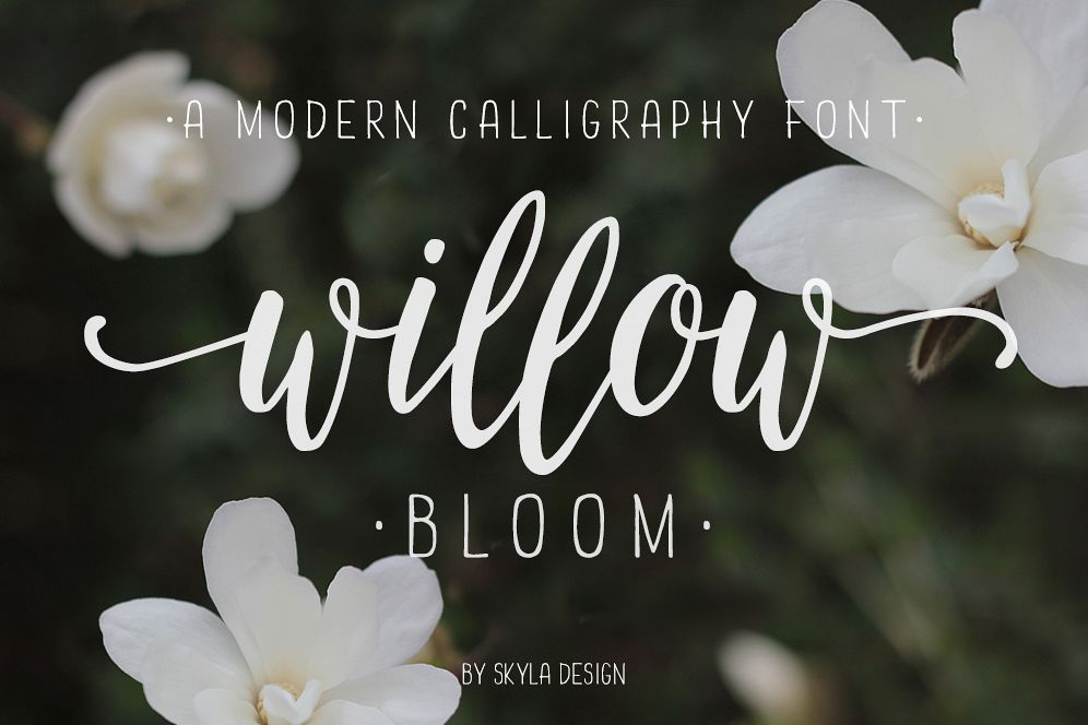 Modern calligraphy font Willow Bloom by | Font Bundles