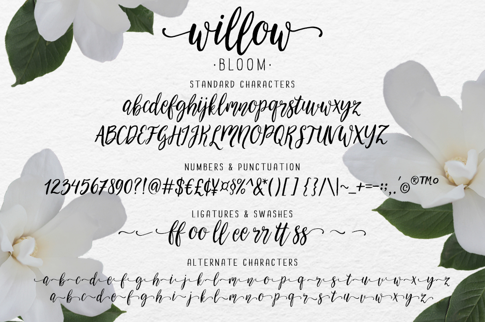 Modern calligraphy font Willow Bloom by SkylaDesign