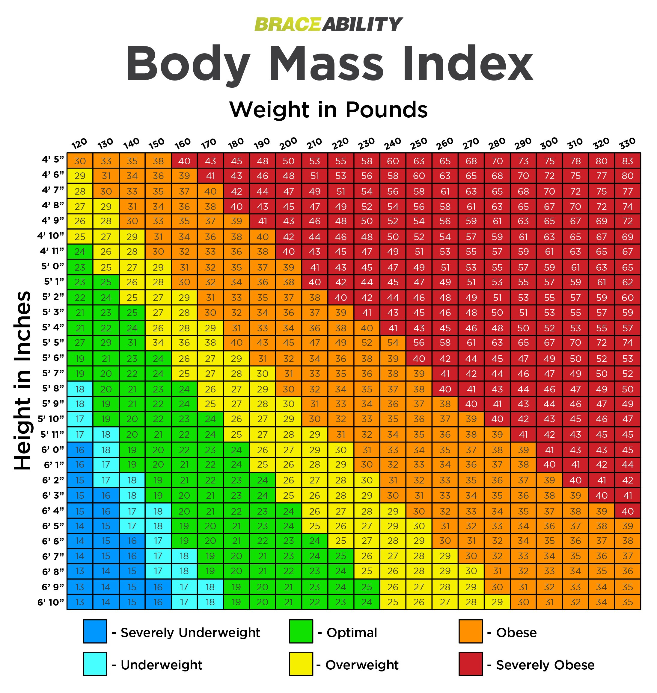 Are you Overweight or Obese? Try our BMI Calculator Chart