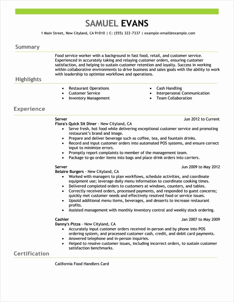 Resume Summary Examples Nice Resume Summary Example Best Sample